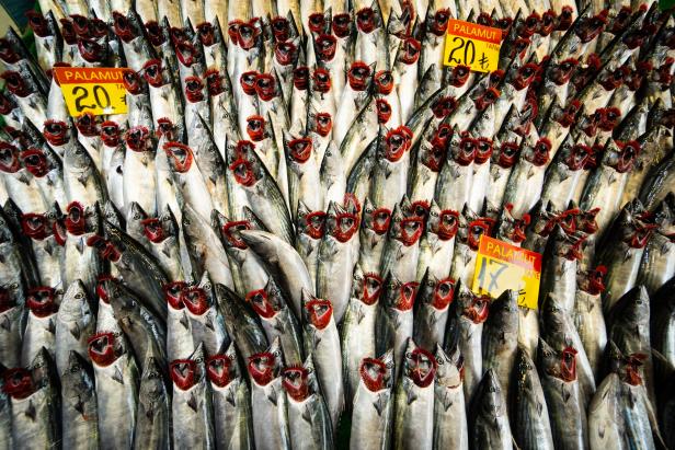 Kadıköy Fish Istanbul